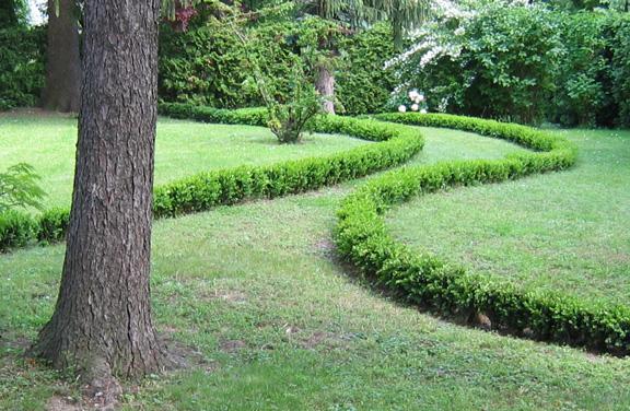 Garten mit Zierhecken