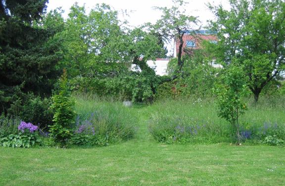 Garten mit kurzem Rasen und hohem Gras
