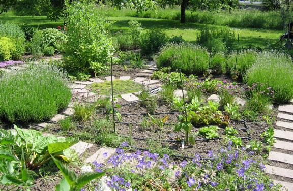 Begehbarer Kräutergarten